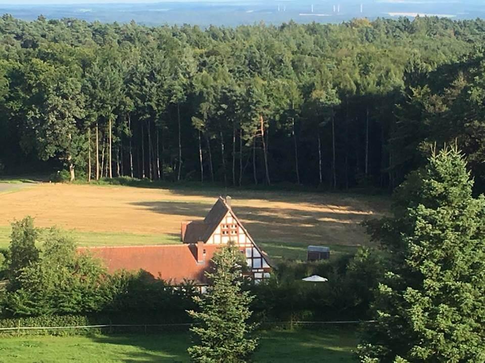 Umgebung vom Jivaka Castle - am Waldrand in Burgholz, in der Nähe von Marburg.